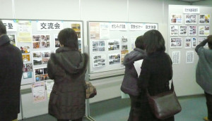 家族セミ4-展示2_copy
